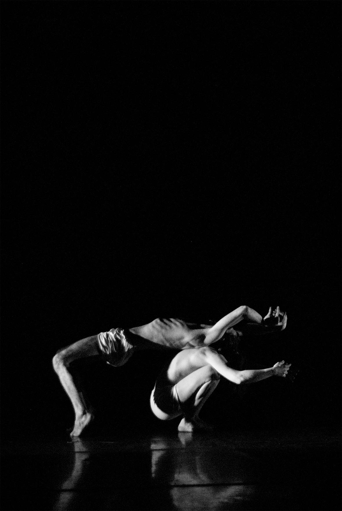 La Phármaco Luz Arcas Compañía de Danza Contemporánea El Monstruo de las dos espaldas